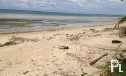For Sale Beach Lot in DaanBantayan Cebu Lot Area: 816