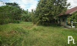 For Sale House and Lot 360sqm Lot Area 2 bedrooms, 1