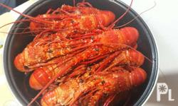 Fresh Lobster and Lapu lapu for sale From easter samar