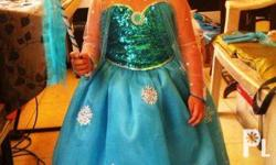 Made to Order Frozen Elsa's Gown with peticot, tiara,