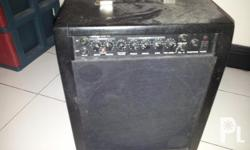 Custom made amplifier Vantage VG-15 amp with 10inch
