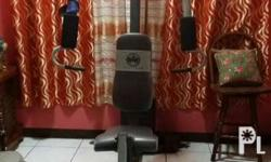 Gym equipment for exercise and body building