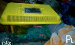 Hamster cage only for 350 php