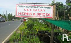 Herbs and spices for sale ? Bay