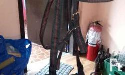 Brand new horse bridle (renda) With Stainless bit Good