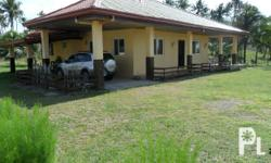 House for Sale in Bobon, Northern Samar. Asking price: