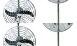 "Floor Fan Brand : tailee Tl-14F-14"" 50W Price: 1271"