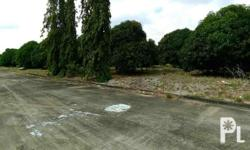 Lot for Sale in Tanza City Industrial Lot for sale at