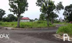 This lot is located in an exclusive Subd in Bacolod