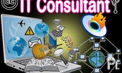 IT Consultant Services Offered