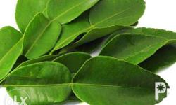 The kaffir lime also known as the makrut lime is a