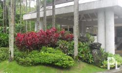 Groundscape Management Corporation, we use our