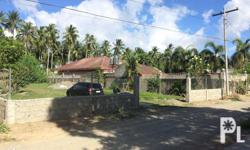 For rent Only Prime Lot, 50 meters from National