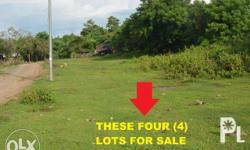 There are four (4) - 450 square meters available