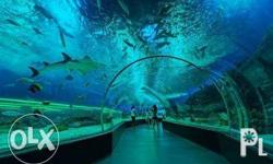 10 Discounted tickets to manila ocean park with lunch