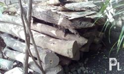Cenrury old roots of molave wood good for outdoor and