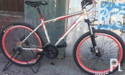 Newly assembled mountain bike Maxxis tires Shimano