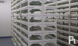 For sale Steel rack for document storage standard size