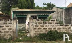 House and lot for sale in JAKA Village, San Perdo,