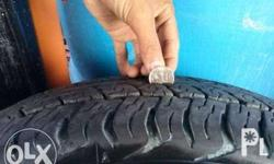205/80/R16 Dunlop Tires 5 month old with 95% Tread