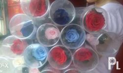 preserved rose for sale buds-180each without stem rose