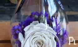 Send A Gift that will last long Preserved Rose or