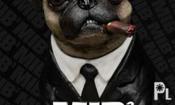 pure breed pug puppies date of birth October 25 2016