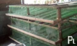 Very cheap 2nd hand quail cages used in just one season