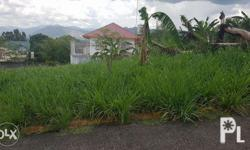Residential Land in Executive Village Filinvest 2
