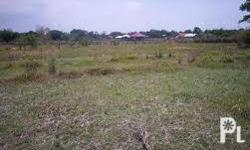 Residential Lot For Sale In Bacolod City