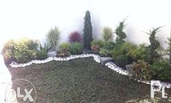 We accept: Landscaping Wall Gardening Plant Deliver