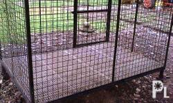 "RUSH SALE Dog Cage 4ftx6ft Height of 43"" With 8 pcs. of"