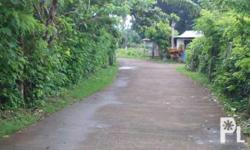 rush residencial lot for sale at San Pablo laguna clean