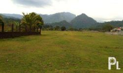 Vacant lot 2000 sqm in Subic available for long term