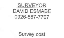 We accept all kinds of Survey Works Relocation Survey