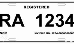 temporary plate (virtual plate) Lto standard pattern