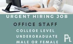 Our Company Looking for Urgent Hiring Office