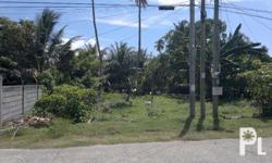 Vacant Residential Lot in Digos City, Located at Burgos