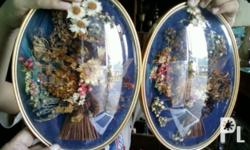 Deskripsiyon old pair dried flower in glass frame ,10