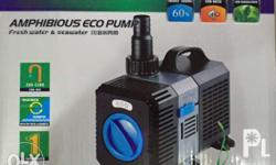 Energy Saver CTP series Water Pumps for Aquaponics,