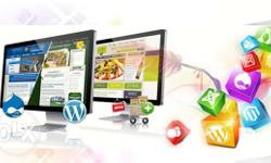 Website Design and Development Starts at 5,000 Feel