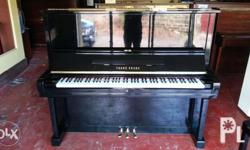 Young Chang U3 Piano Sale 2 Years warranty FREE service